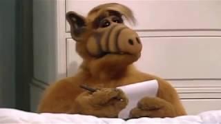 Alf vs Mirko