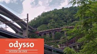 Was macht die Schweiz besser? | Odysso – Wissen im SWR