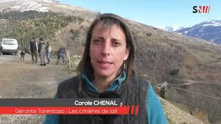 Haute Tarentaise : Weekend 'Fermes ouvertes' dans les alpages..