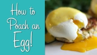 how to poach an egg perfect poached eggs recipe