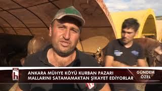 KURBAN PAZARI