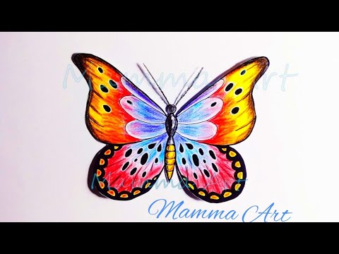 Easy Butterfly Drawing With Colour Pencils Step By Step Oil Pastel Butterfly Drawing Youtube