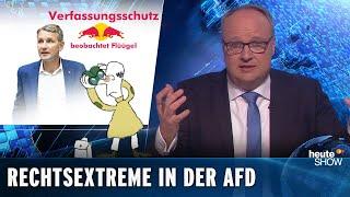 "AfD: Der Verfassungsschutz beobachtet Bernd Höckes ""Flügel"""