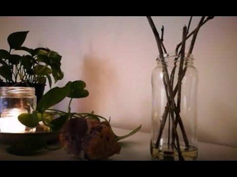 🌷 Ambientador Casero Y Natural MIKADO ✨✨✨