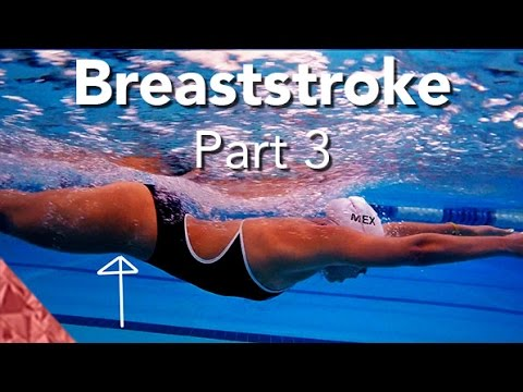 how to swim front crawl beginners