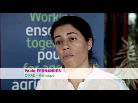 Martinique : une plateforme d'analyse biologique des sols