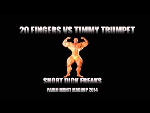 20 Fingers Vs Timmy Trumpet - Short Dick Freaks - Paolo Monti Mashup 2014