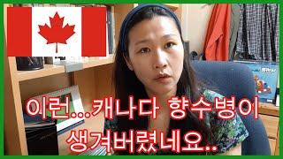 캐나다 향수병이 걸렸어요.. 캐나다 뭐가 가장 그리운가…
