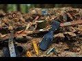 Коп по войне - Блиндаж минус 11 ( Вlindage minus 11 ) / Searching with Metal Detector