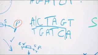 KPK - Gattaca