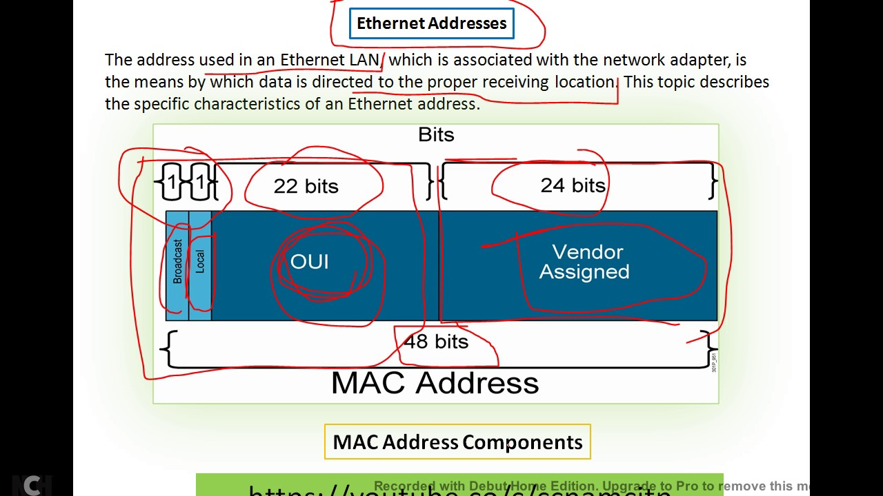 Ethernet Frame Addressing..!!.MAC Addresses and Binary-Hexadecimal ...