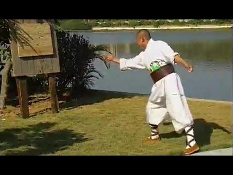 Shaolin kung fu hidden weapons 2
