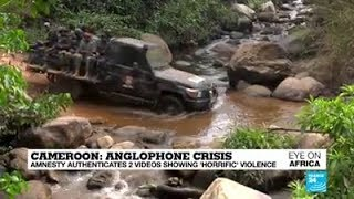Cameroon: Anglophone Crisis! Amnesty In