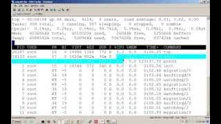 linux performance tuning commands, uptime,top,mpstat,iostat,vmstat ,free,ping,Dstat  Tutorial