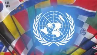В ООН заявили о 3344 погибших мирных жителях в Донбассе с 2014 года
