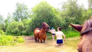 Купание на лошадях (КСК Авангард, Электросталь)