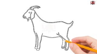 How to Draw a Goat Step by Step Easy for Beginners/Kids – Simple Goats Drawing Tutorial