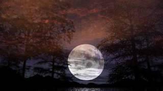 Luna Luz - Francesca Ancarola