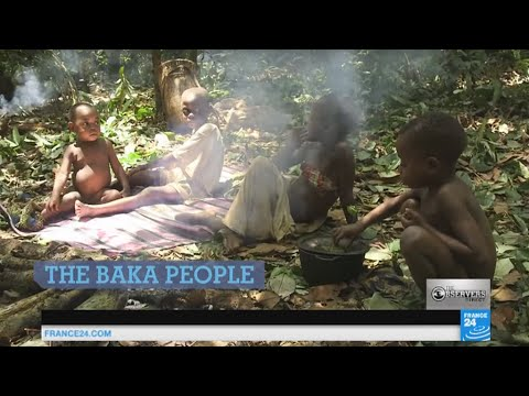 Baka pygmies: the fight for survival of a threatened people