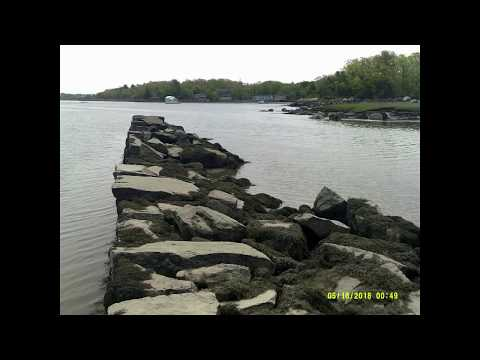 Exploring Stoney Cove, in Gloucester, on the Annisquam River