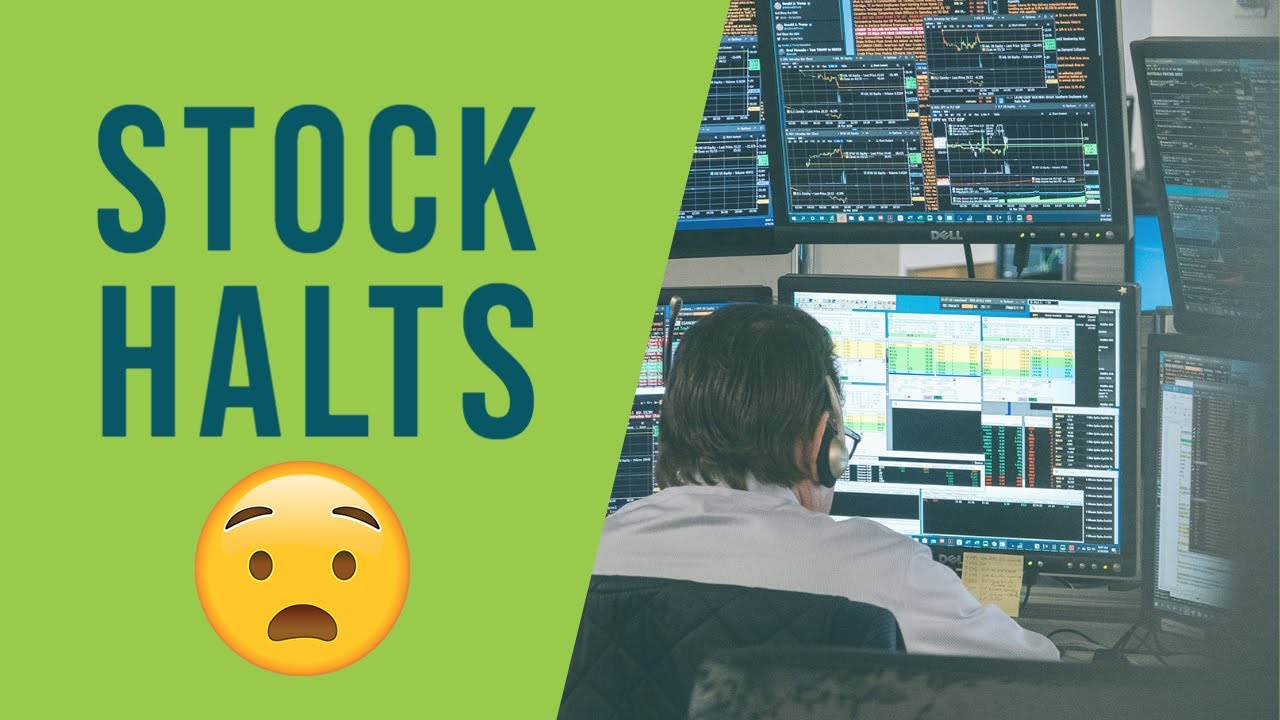 Download How to effectively trade stock halts