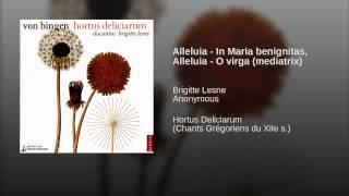 Alleluia - In Maria benignitas, Alleluia - O virga (mediatrix)