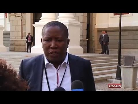 Malema also apologises for calling Zille a cockroach