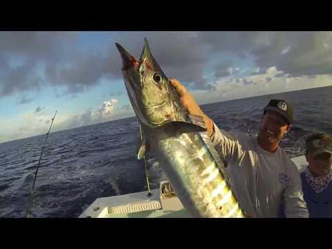 Big Wahoo, Mahi And Tuna Aboard Costa Morada Fishing Charters   Islamorada Florida Keys