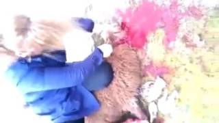 Kurban kesen kadın. Sheep slaughter woman. Sacrifice. victim. 3