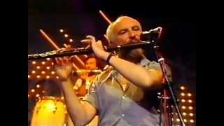 �������� ���� Irish flute :Matt Molloy plays a slow air and reels ������