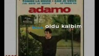Adamo-Her Yerde Kar Var (Karaoke)