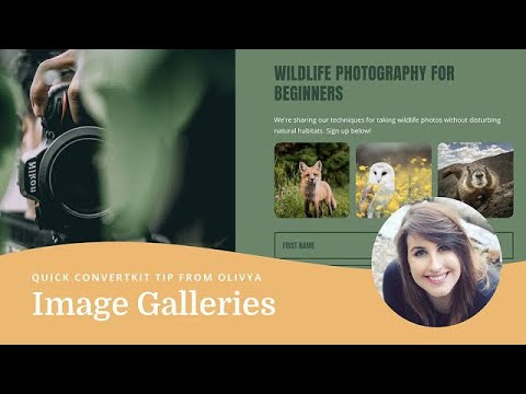 How to add an image gallery to your landing page