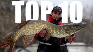10 NAJLEPSZYCH FILMÓW WĘDKARSKICH FishingWithAce | 40k special