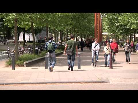 Tilburg Law School | Education & Research