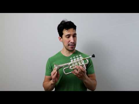 Piccolo Trumpet Review and Rondeau, Masterpiece Theater intro