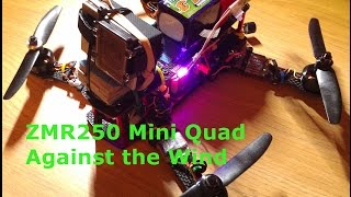 ZMR250 Mini Quad - Against the Wind // Naze32 - Cobra - GoPro - 4S