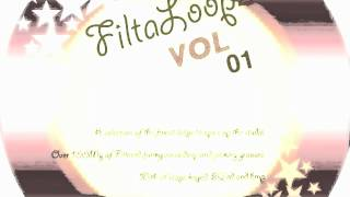 filtaloopz Vol 1 - jacking,chicago house sample pack