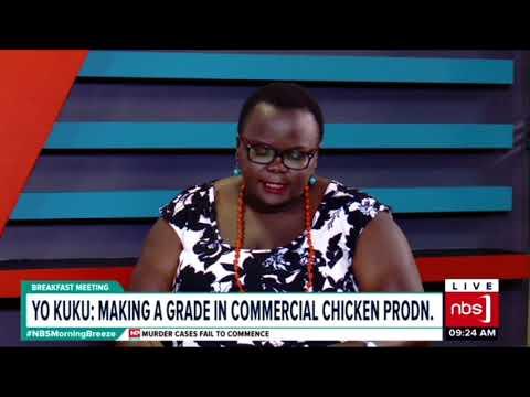 Break Fast Meeting: Yo Kuku, Making A Grade In Commercial Chicken Production