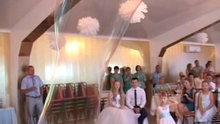 Шоу гигантских мыльных пузырей в Бузулуке на свадьбу