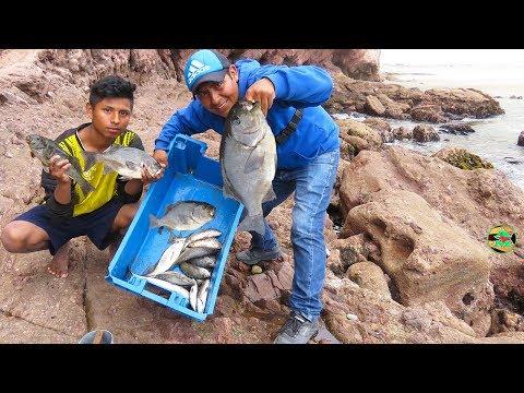 PESCADOR And Moll PESCA 22 Peces Grandes - Pesca con Anzuelo