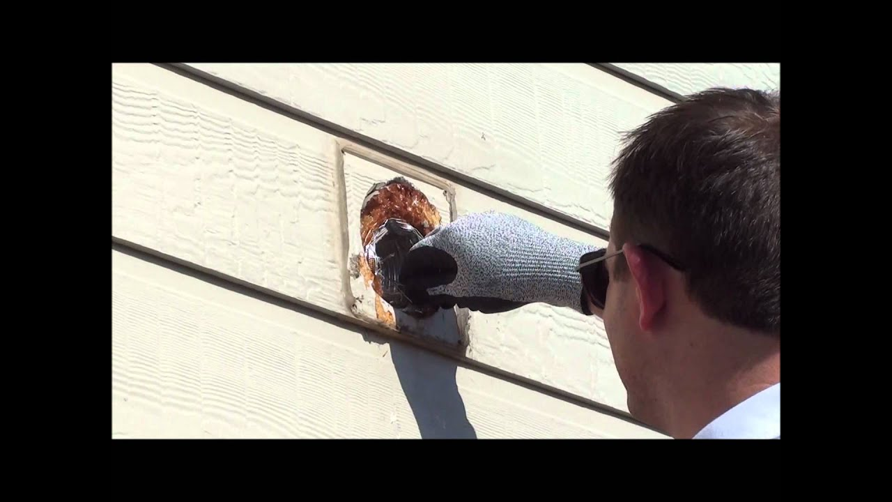 small bird nest removal from a bathroom exhaust vent youtube