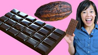 Cocoa POD to CHOCOLATE Bar - How to Make A DIY Bean-to-Chocolate Bar at Home