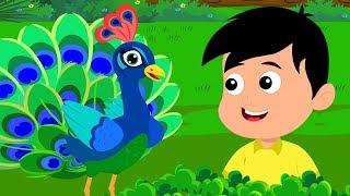 Nache Re Mor | Nursery Rhymes In Hindi | नाच रे मोर | Hindi Balgeet
