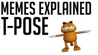 'T-Pose' Memes Explained