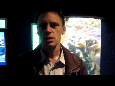 Phil Jane of Cine Aqua talks about the Two Oceans Aquarium