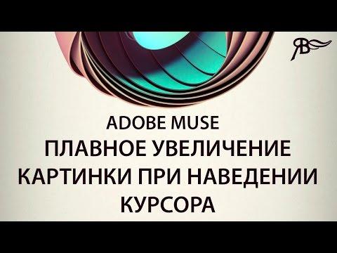 Плавное увеличение картинки при наведении курсора Adobe Muse
