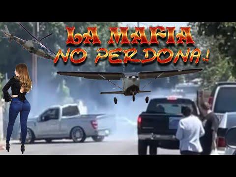 La mafia no perdona película