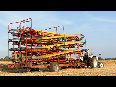 Baling and loading small bales | David Brown 885 | Kemper Ba