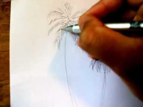ศิลปะ การวาดภาพต้นมะพร้าวด้วยดินสอ
