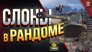 СЛОНЫ В РАНДОМЕ / Борода - Корзина - Юшкевич